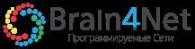Brain4Net Программируемые сети